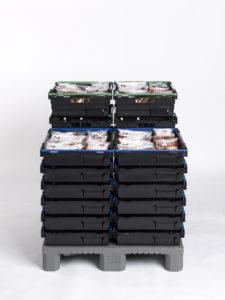 NLP Plaskasse 185 og 102 med ferskvare på NLP Plastpall Halvpall