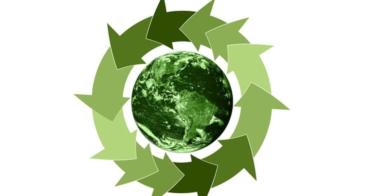 Gjenbrukspall fra NLP er et bærekraftig valg
